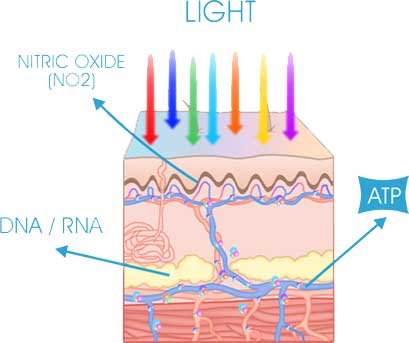 How does LED Light Therapy work?